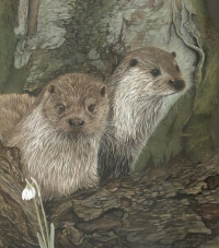 The Otters by Frances Whitman